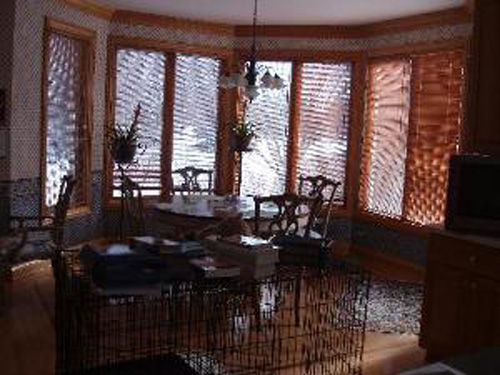 Nothing attracts high-end buyers like a dark dining room and a big cage acting as a 2nd table/room divider (is that a very large cat behind those books?)!  This is an $870,000 listing in Illinois.