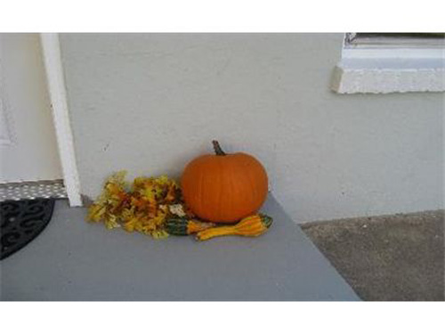 If you like the pumpkins, why not show how they look by showcasing the ENTIRE front porch?  Unless the pumpkins are a great selling feature?  No?  This was posted to market a $169,900 listing in Colorado